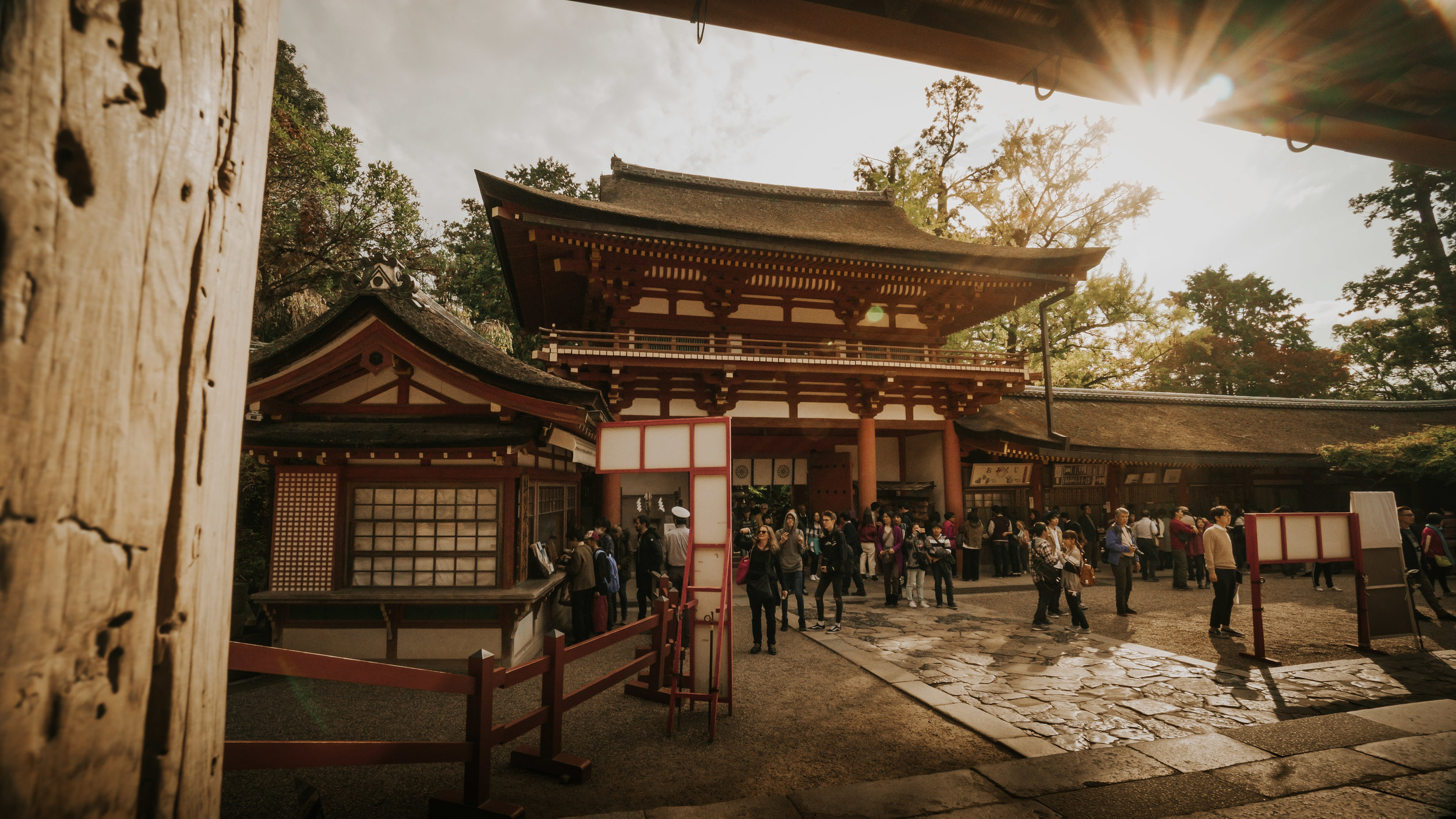 polywander-what-to-see-in-nara-park-shrine