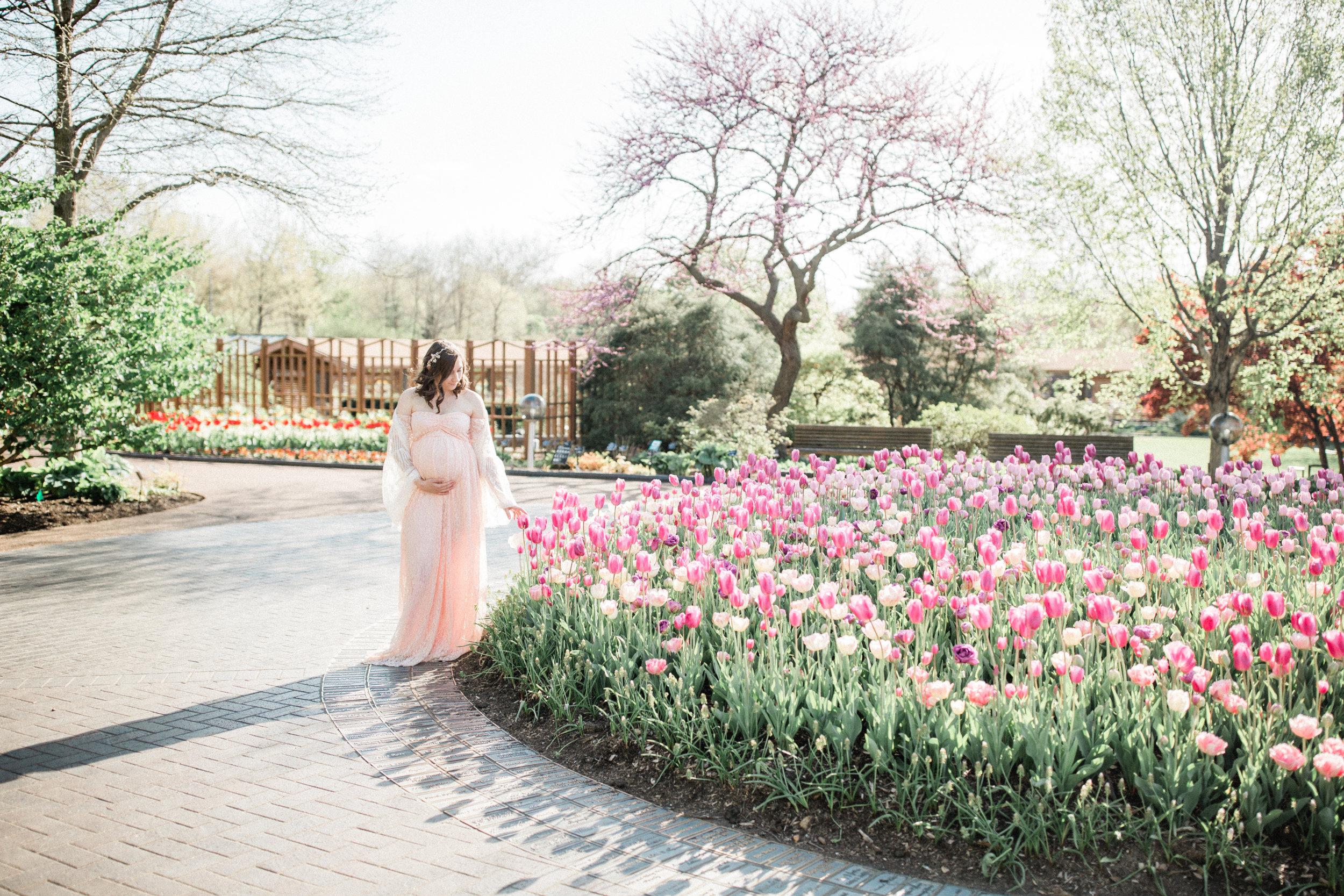 dorothy-louise-photography-Missouri-botanical-garden-maternity-8586.jpg