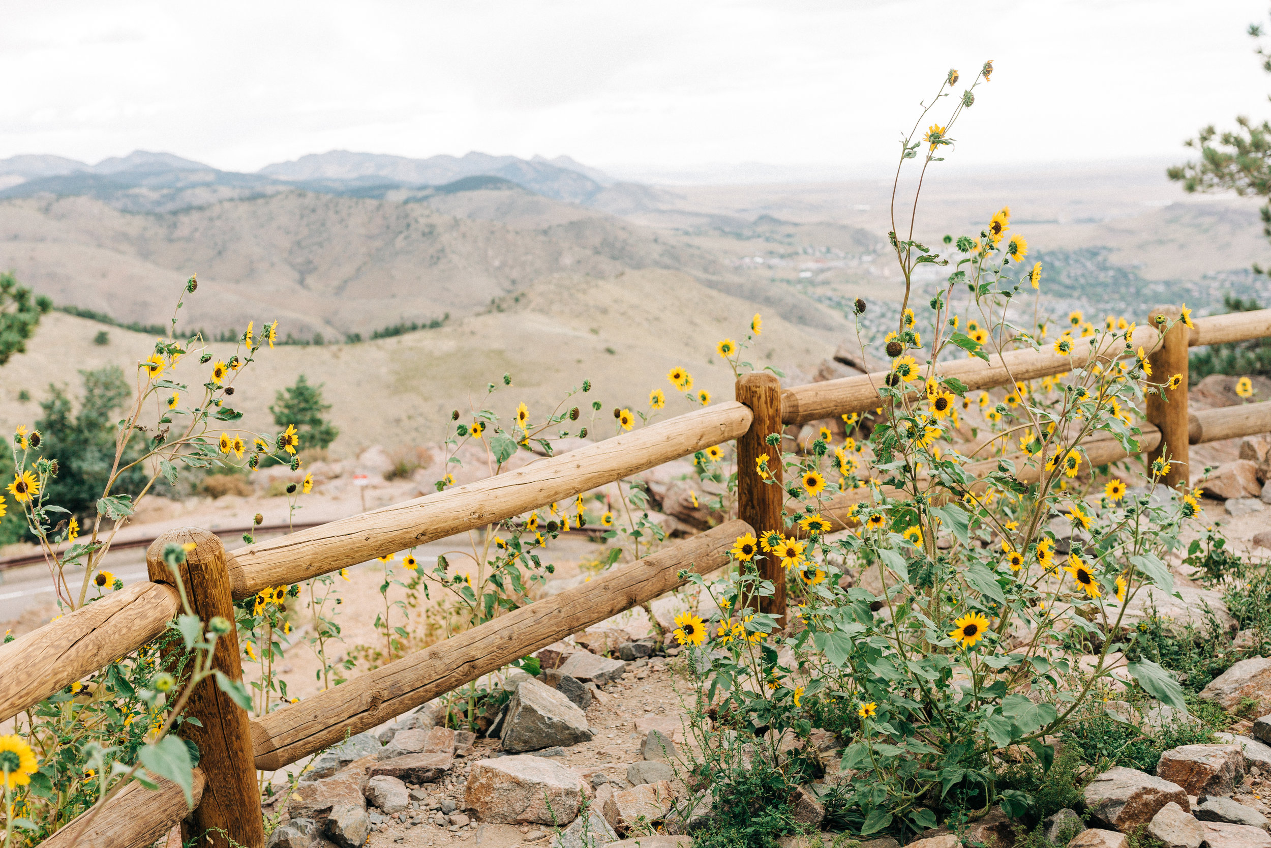 Dorothy_Louise_Photography_Lookout_Mountain_Colorado_Engagement_Gennie_Sean-110.jpg
