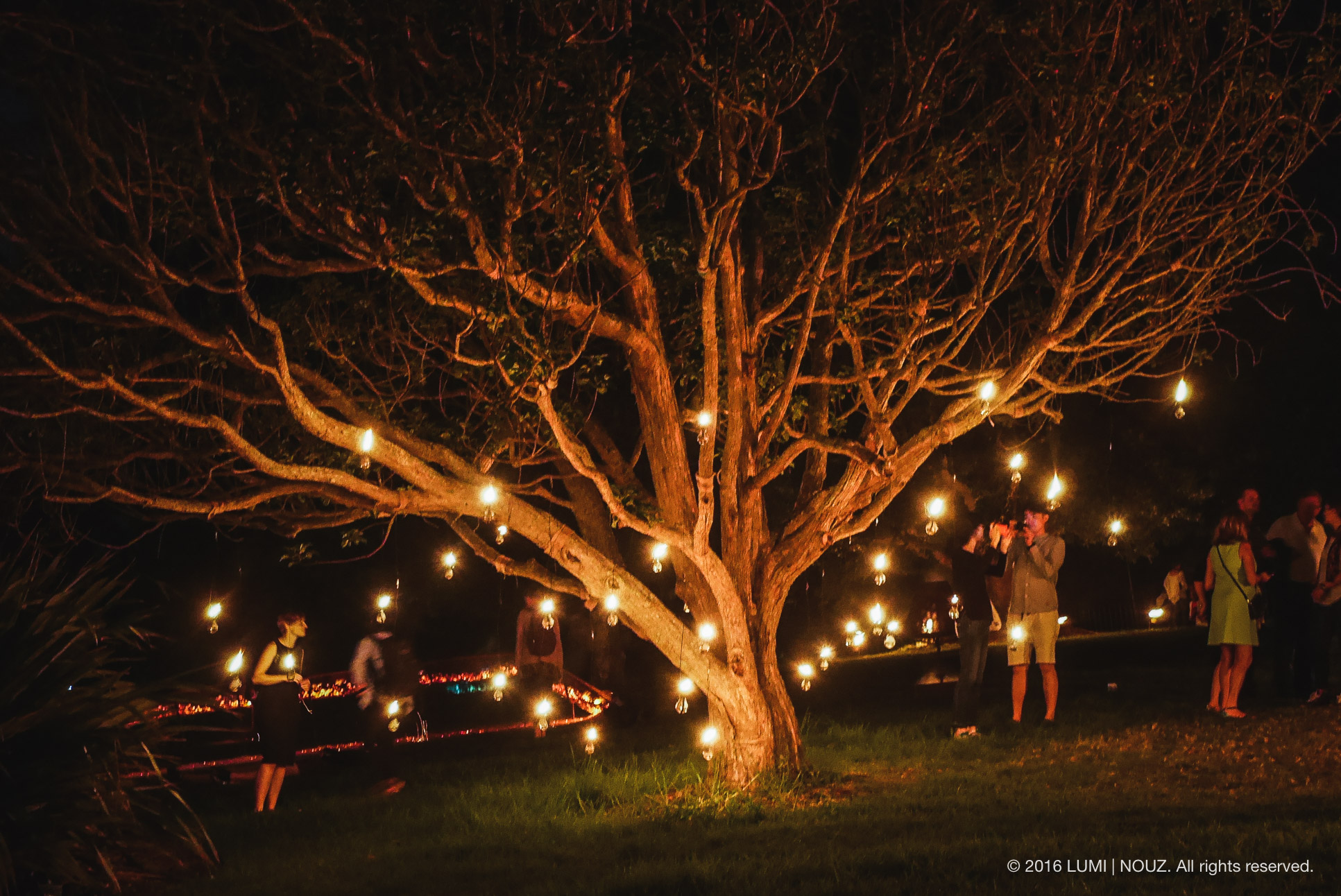 Carabosse Fire Garden, Auckland, North Island, New Zealand