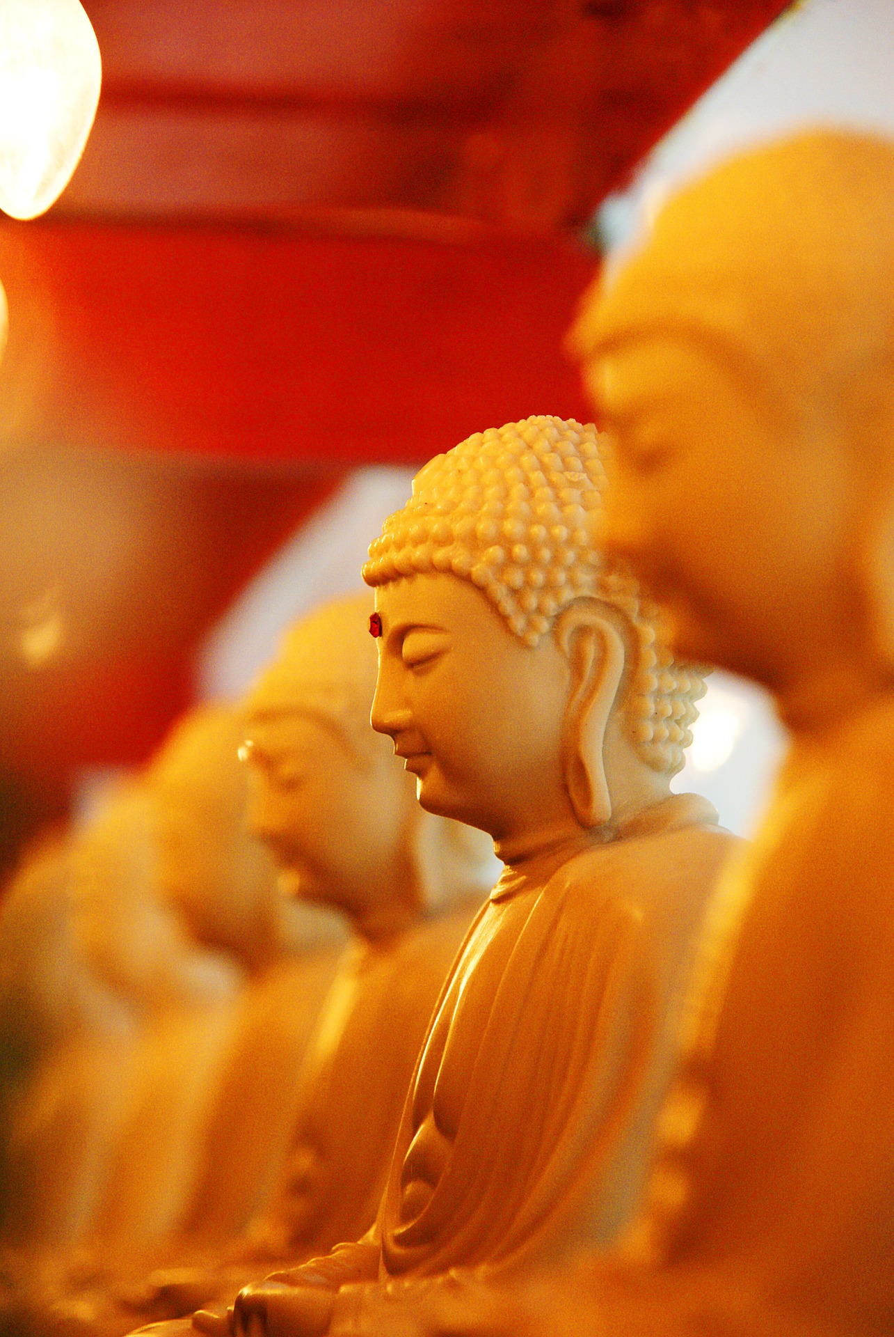 buddha-650570_1920.jpg