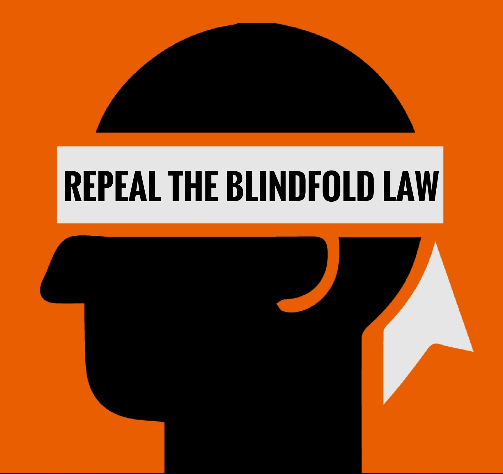 REPEAL+THE+BLINDFOLD+LAW+%281%29.jpg