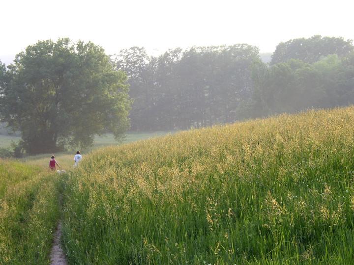 Hickory-Meadows.jpg