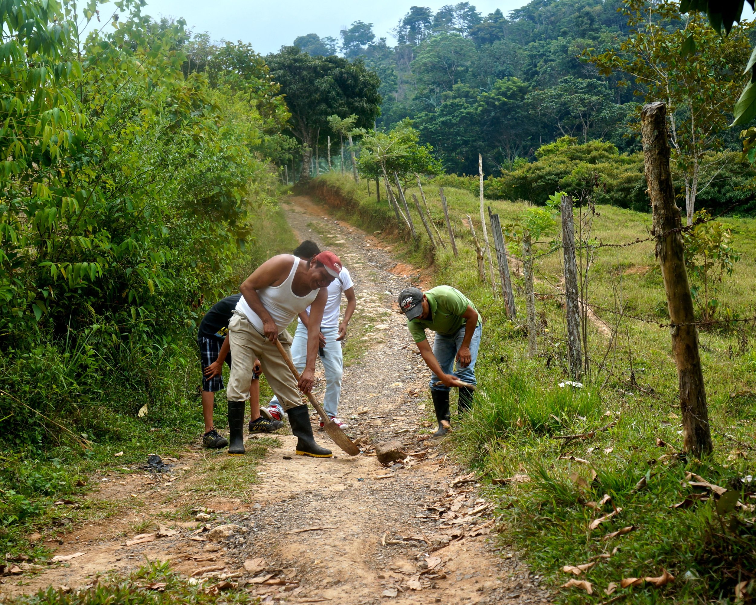 building the road to cacao by hand - enliven cacao (3).jpg