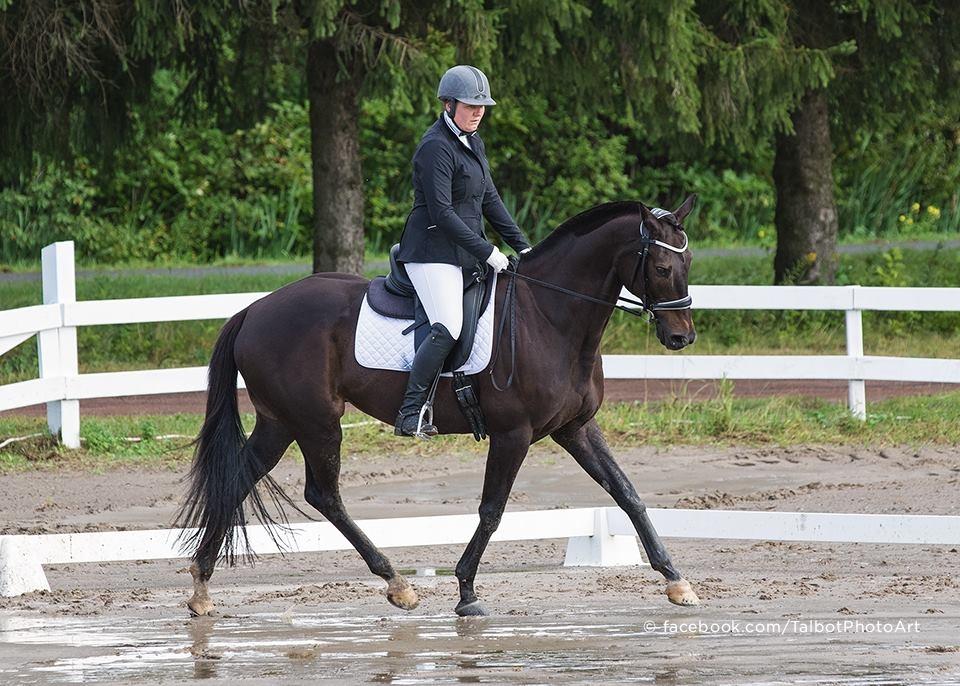 Elizabeth Dawson   Finissante en 2004 en Techniques Équines  5 ans de tournée avec le spectacle 'Cavalia'  Instructeur accredité par Cheval Québec  Entraîneur pour cavaliers, débutant, intermédiaire et avancé en dressage.