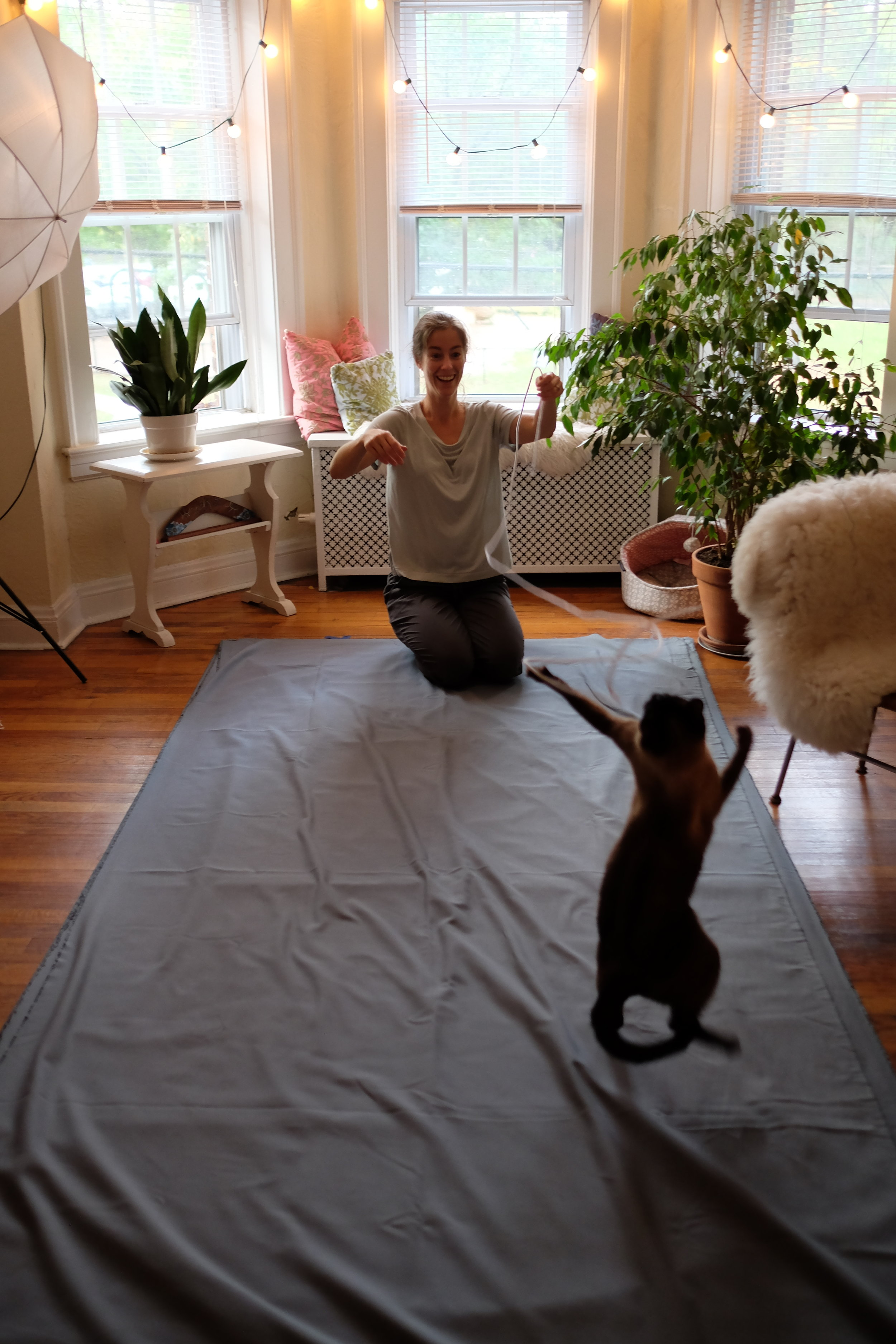 Kristina making curtains, and playing with Jasper.