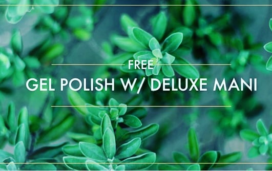 🌸🌸DAY2 🌺🌺 Enjoy a Free Gel polish with a Deluxe Manicure ! Today Only !! Call now to book !  503.718.0124 . .. ... .... **Must call today and must redeem within 14 days of this post.