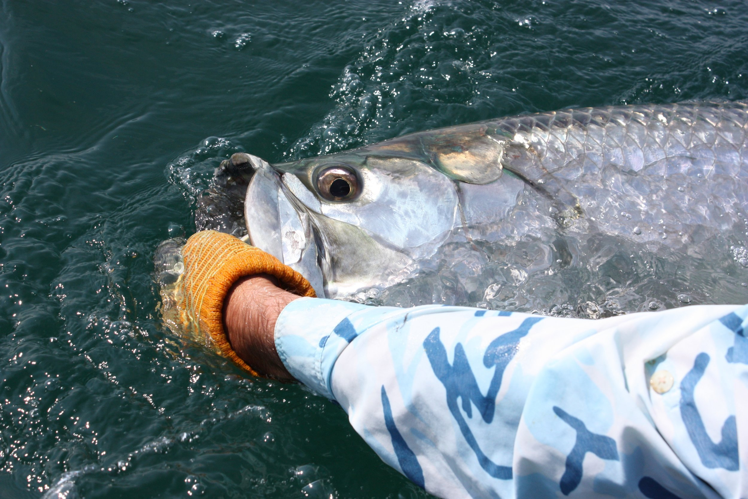 3 Day Fishing Trip -