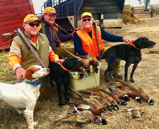 Not bad for the last weekend of the season. James, Hank, and Chris made the 14 hour drive worth it. . . . . #hunting #huntinglife #upland #uplandhunting #nebraska #birddog #pointersofinstagram #huntingdogs #outdoors #wepursuit #ktdiaries #pheasant #pheasanthunting