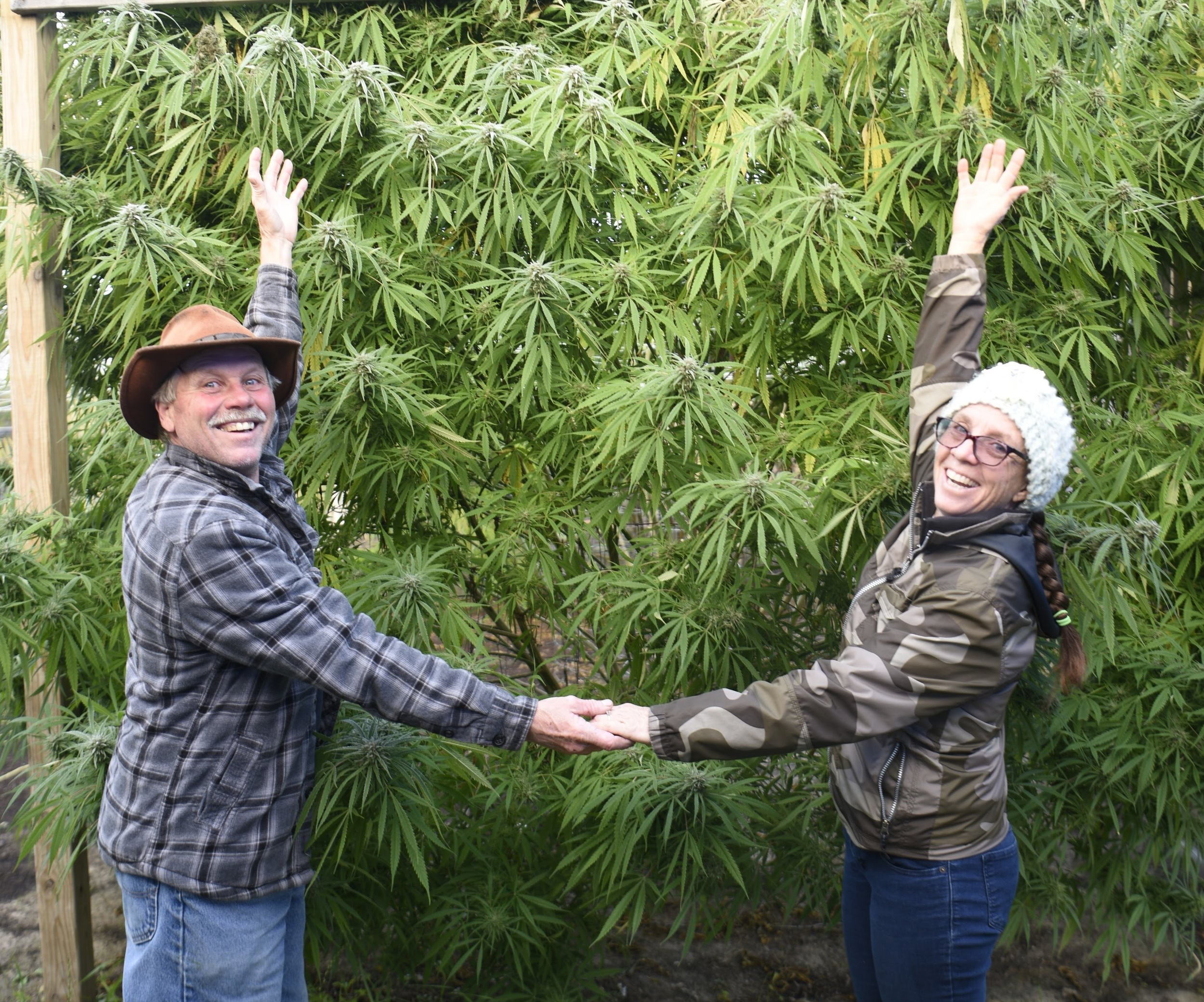 Our Team - Stephanie and Paul are the duo behind Mitten Mama Meds. Paul is a lifelong farmer and outdoorsman and Stephanie has raised and nurtured every kind of plant you can think of (and a few kids and dogs, too). They're on a mission to help people discover the power and potential of cannabis treatments.