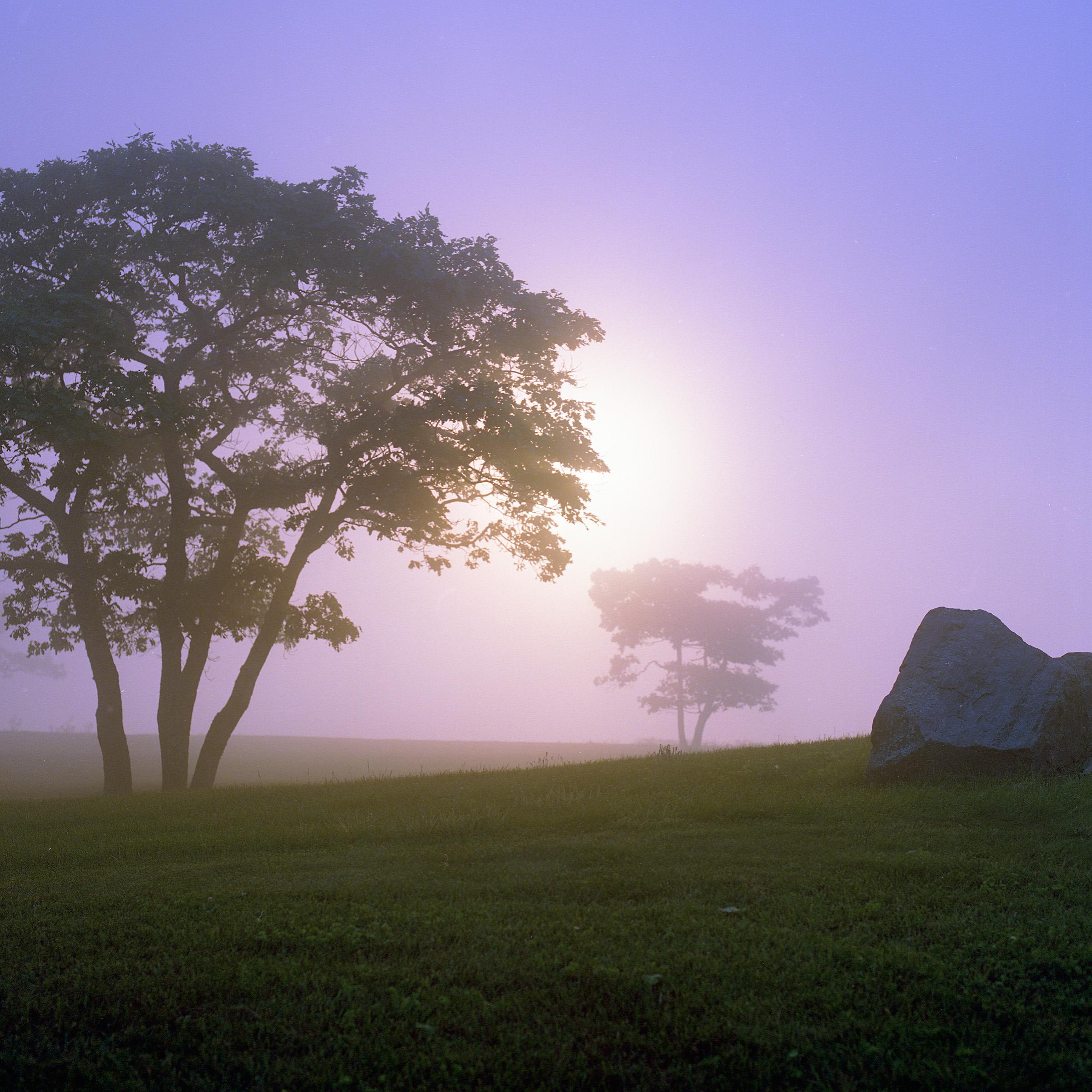Robertson_Patrick_Mountain_Mist2.jpg