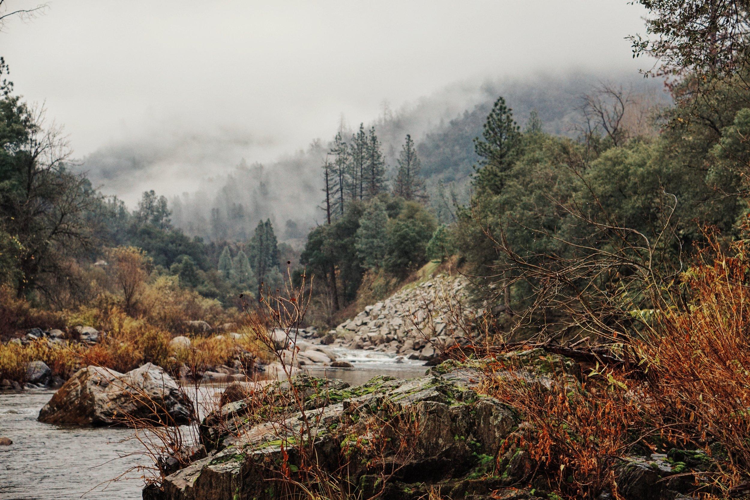negative-space-autumn-trees-river-clouds-fredrick-kearney-jr.jpg