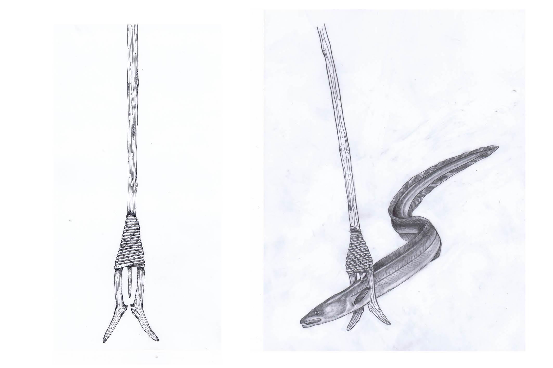 Drawing-of-eel-leister.jpg