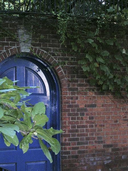 Behind The Blue Door