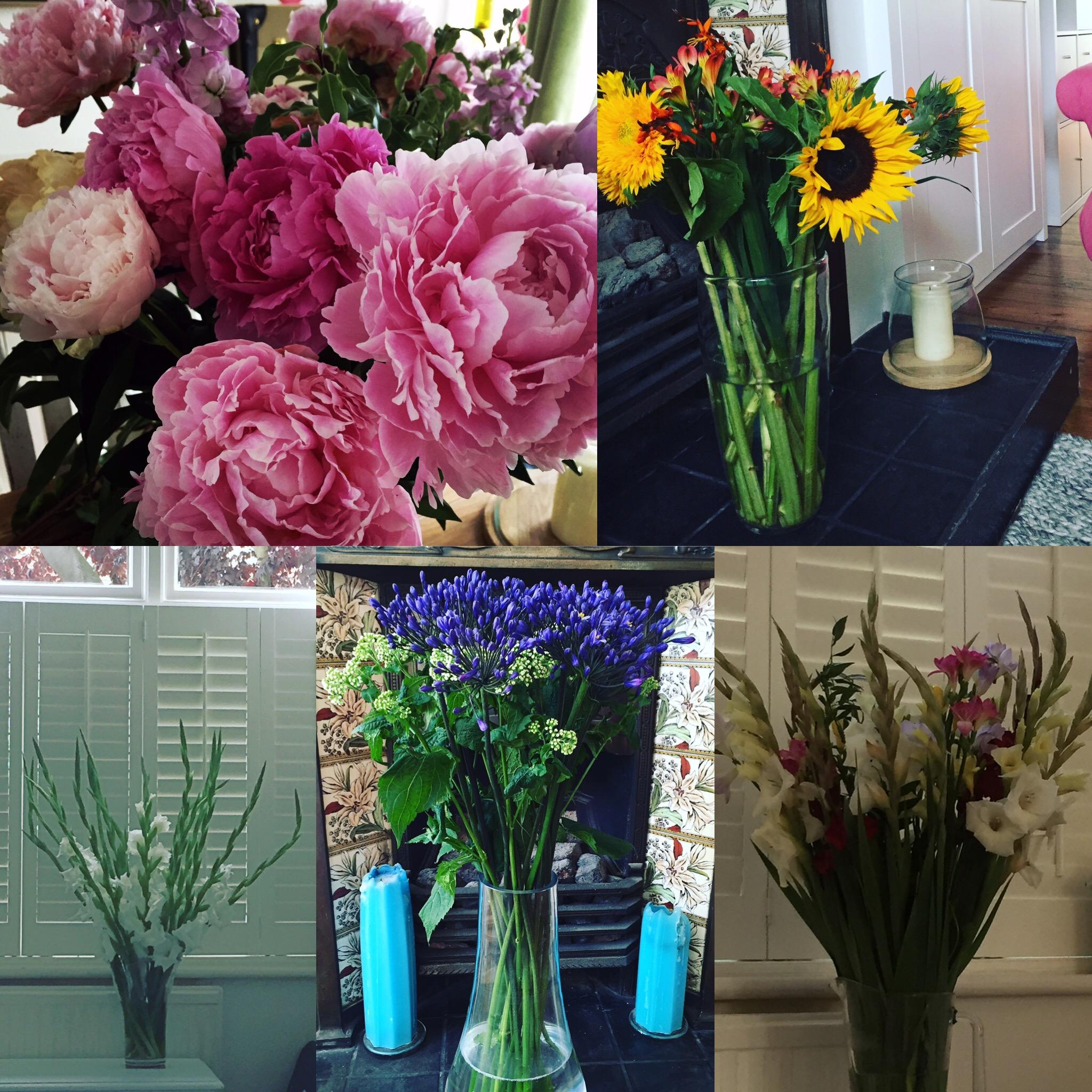 Lovely Freddie's Flowers in my home
