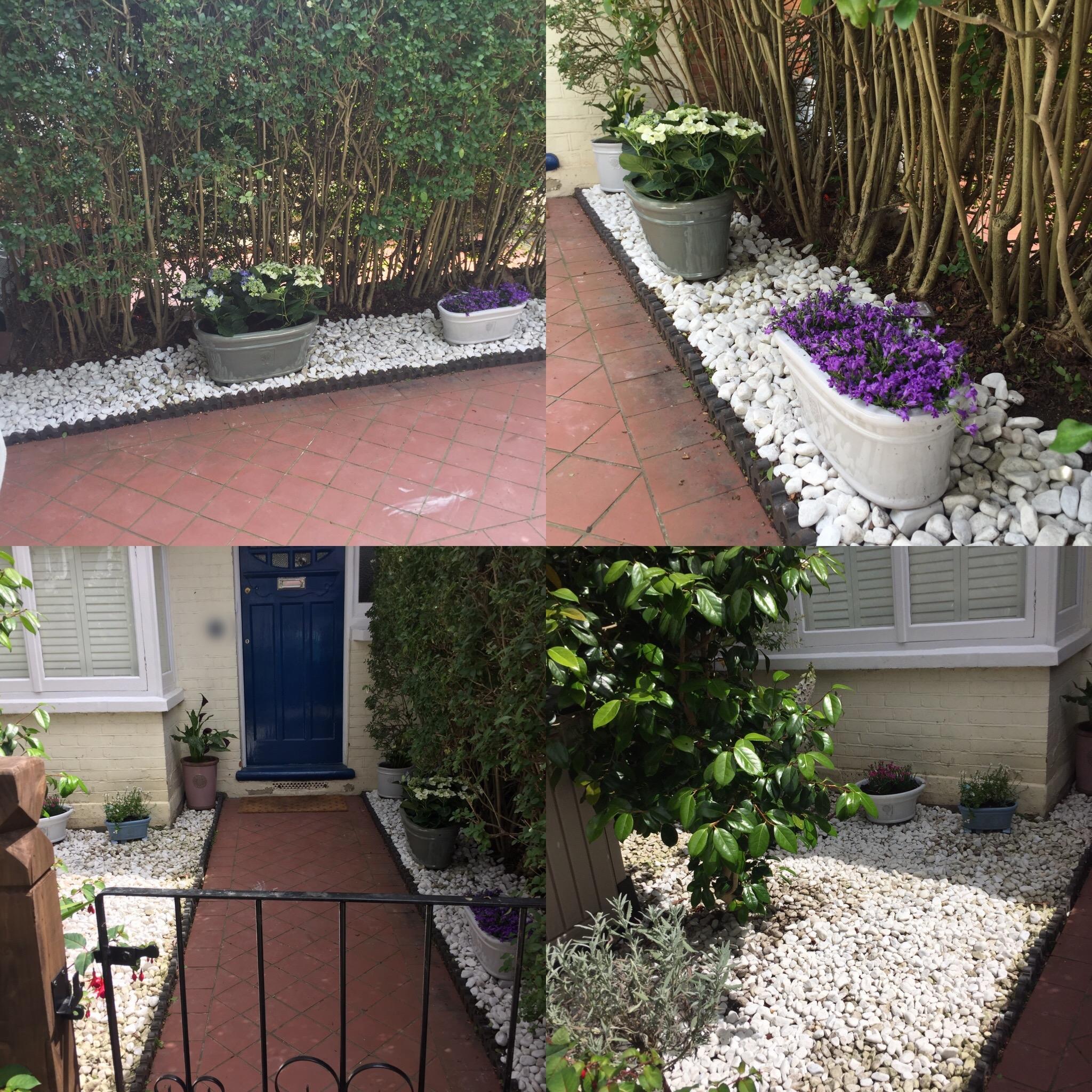 Garden Path & Plants