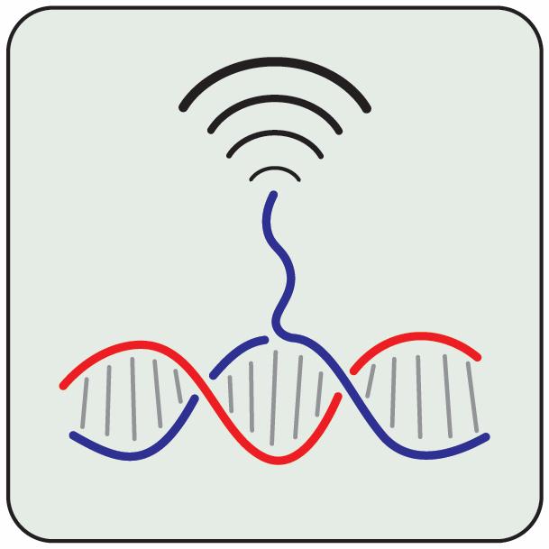 Biosensing.jpg