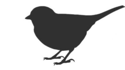 bird+silhouette.jpg