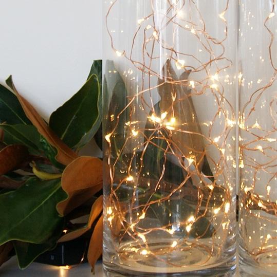 Copper+Seed+Lights+.jpg