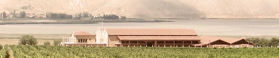 winery_img.jpg