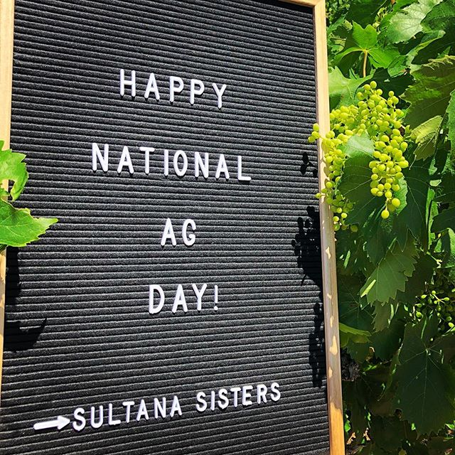 Happy National Ag Day! Let's celebrate Australia's farming sector 🚜  #sultanasisters #mallee #getfarming #agday #australia #womeninag #youthinag #nad #sultana #mildura #farmlife #aglife #agriculture
