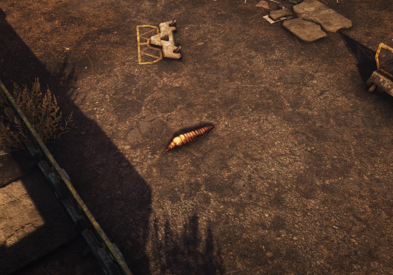 A Fireworm