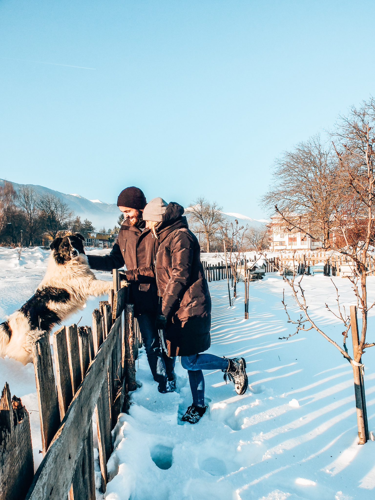 Bansko - budget holiday/couple with dog in snow