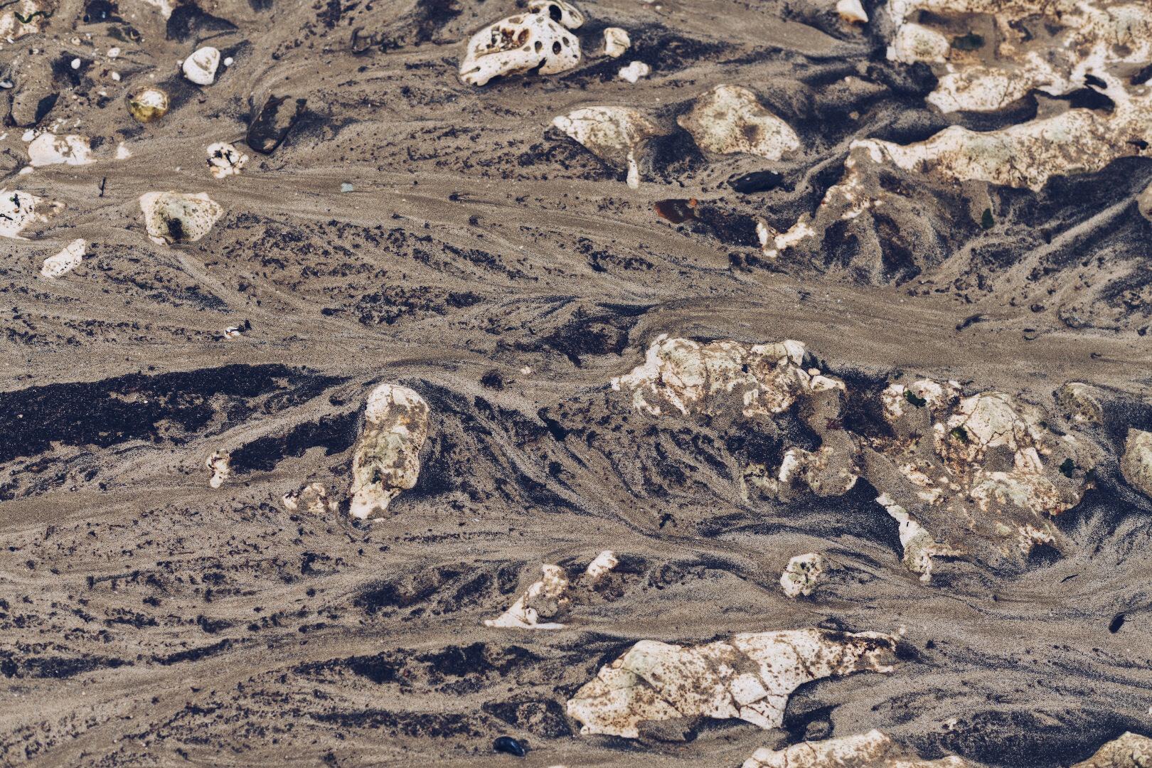 SandDelta.jpg
