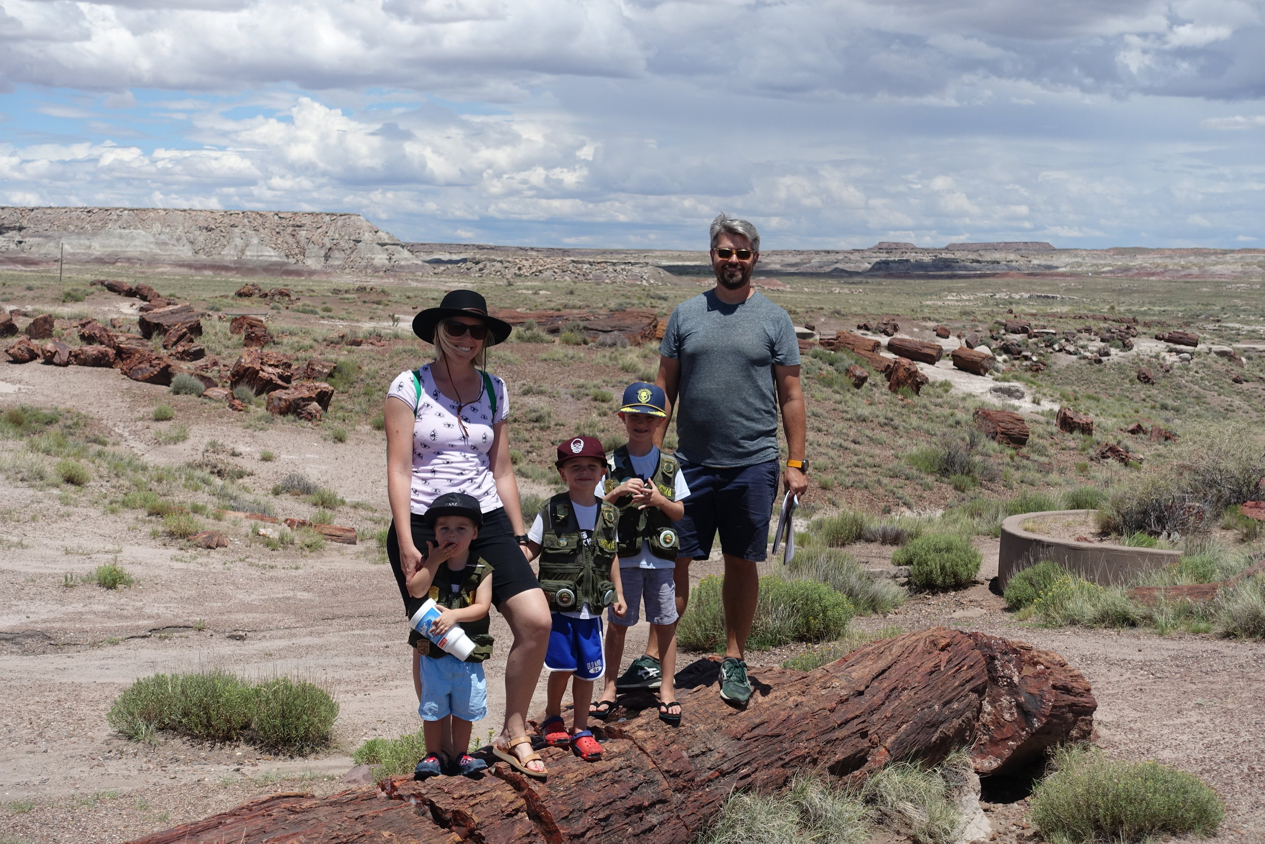 Painted Desert and Petrified Forest National Parks -
