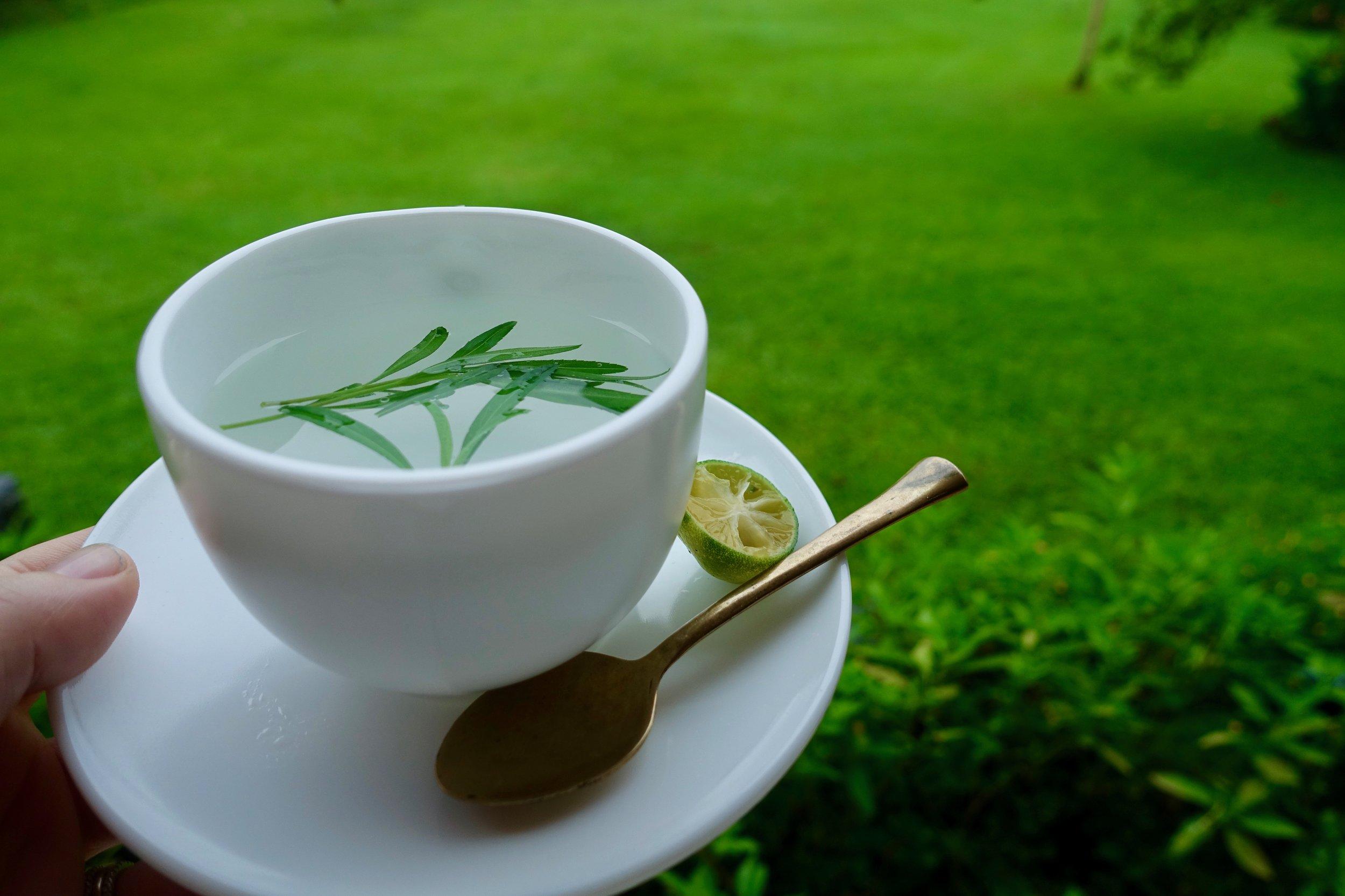 tarragon tea.jpg