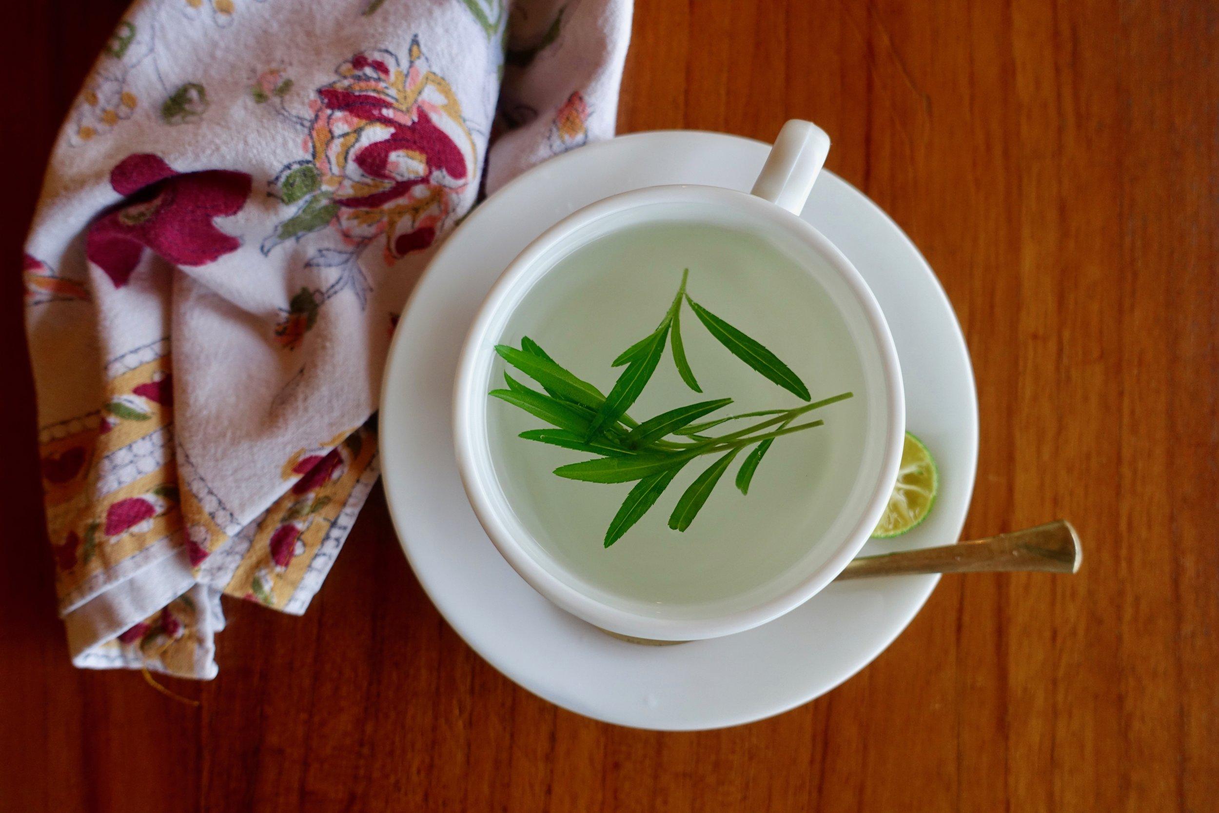 *tarragon tea ll.jpg