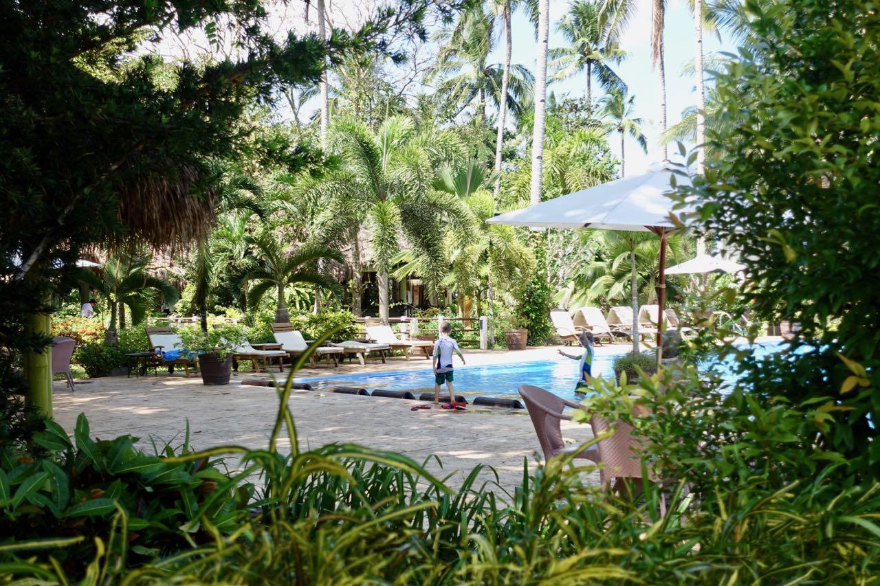 pool view lll.jpg