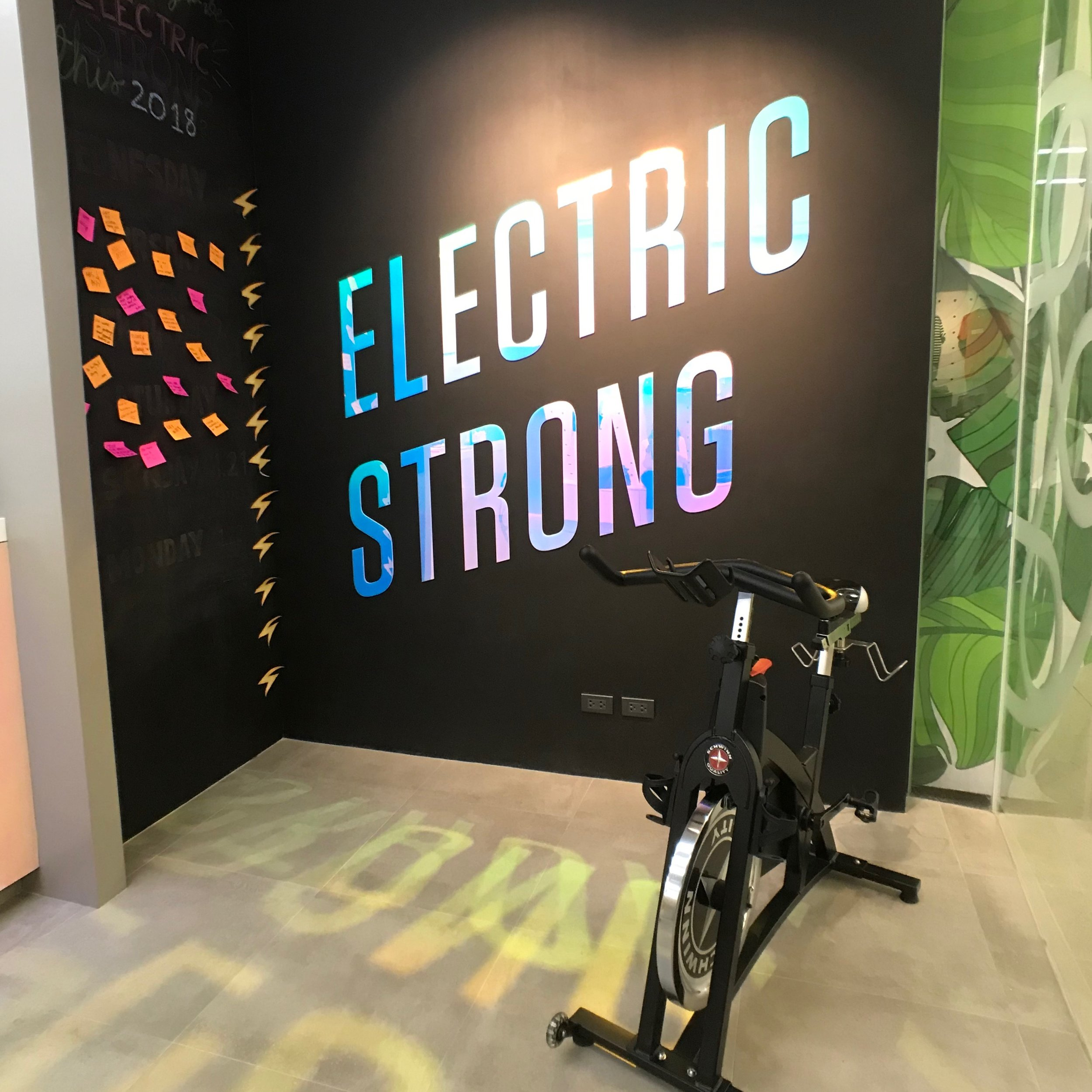 Electric Is Back! -