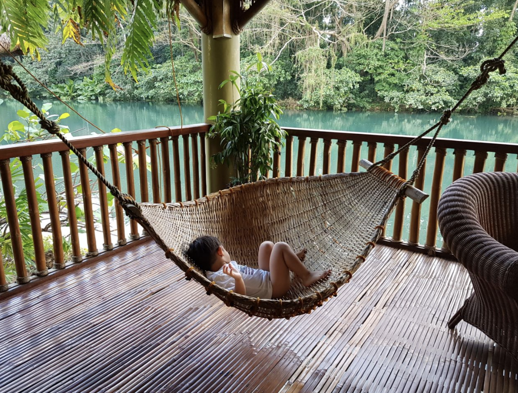 inigo in a hammock.png