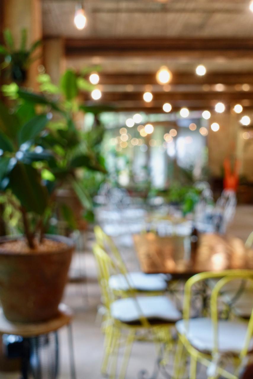 blurred view.jpg