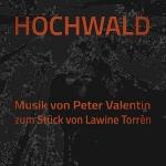Hochwald.jpg