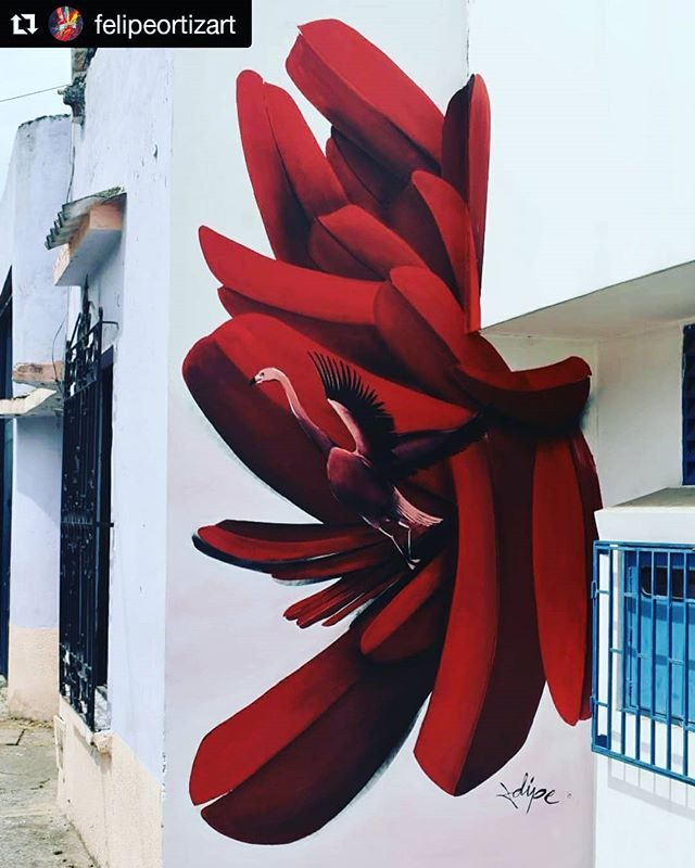 #repost by @felipeortizart /// Mural realizado en el barrio el Piloto en Cali, Colombia. /// New addition to @muroalbarrio!