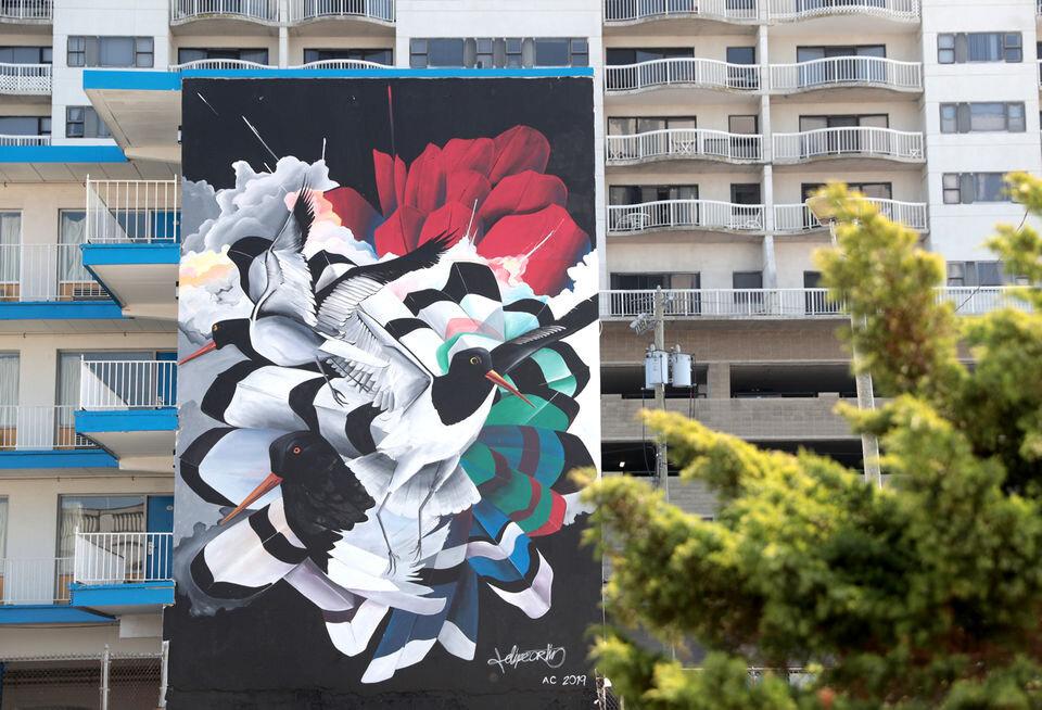 "Felipe Ortiz  ""Oystercatchers"" completed for 48 Blocks Mural Project.  45ft x 18ft. Atlantic City NJ. 2019 (photo by Tim Hawk)"