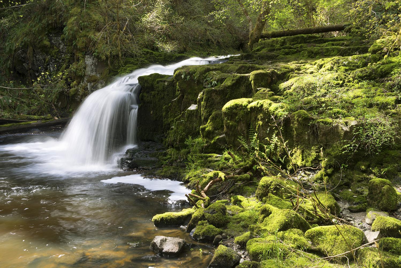 Many waterfalls to explore at Bowden Park, Nanaimo