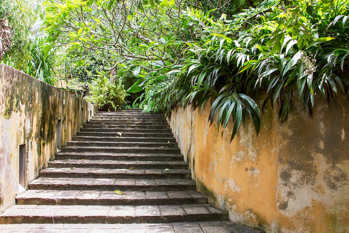 Steps by the pool .jpg