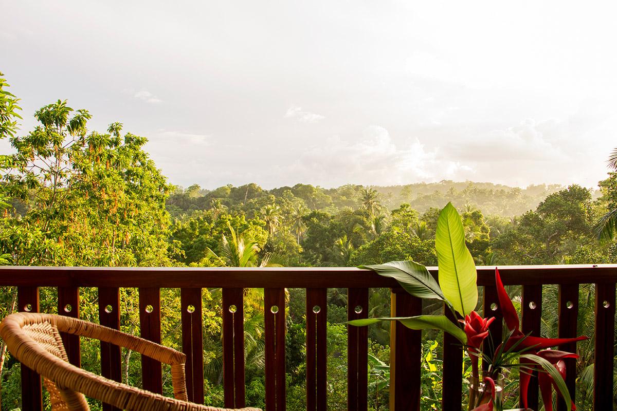 view from balcony shala room 2.jpg
