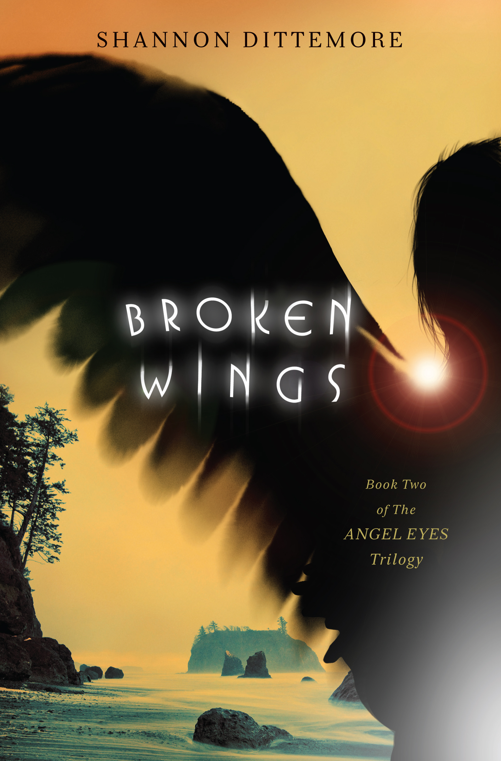 Broken Wings_cover.jpg