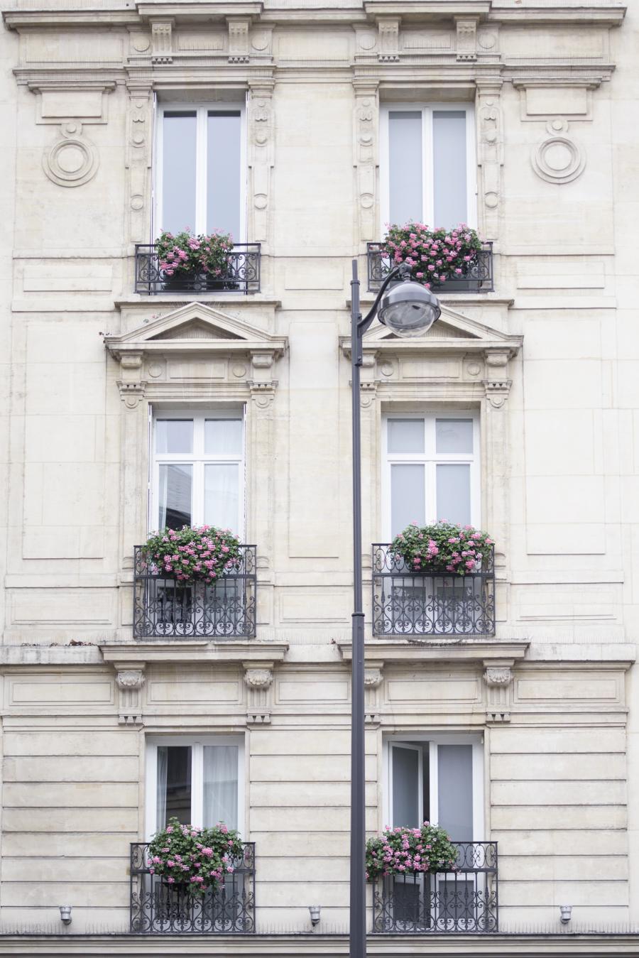 Windows on Paris