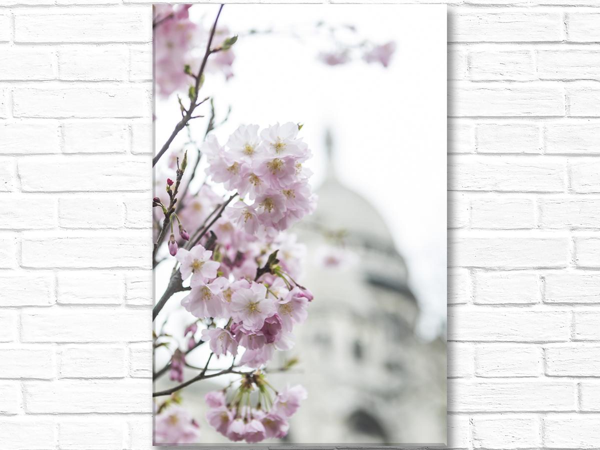 Paris France Home Decor Canvas Wall Art, Pink Blossoms Sacre Coeur