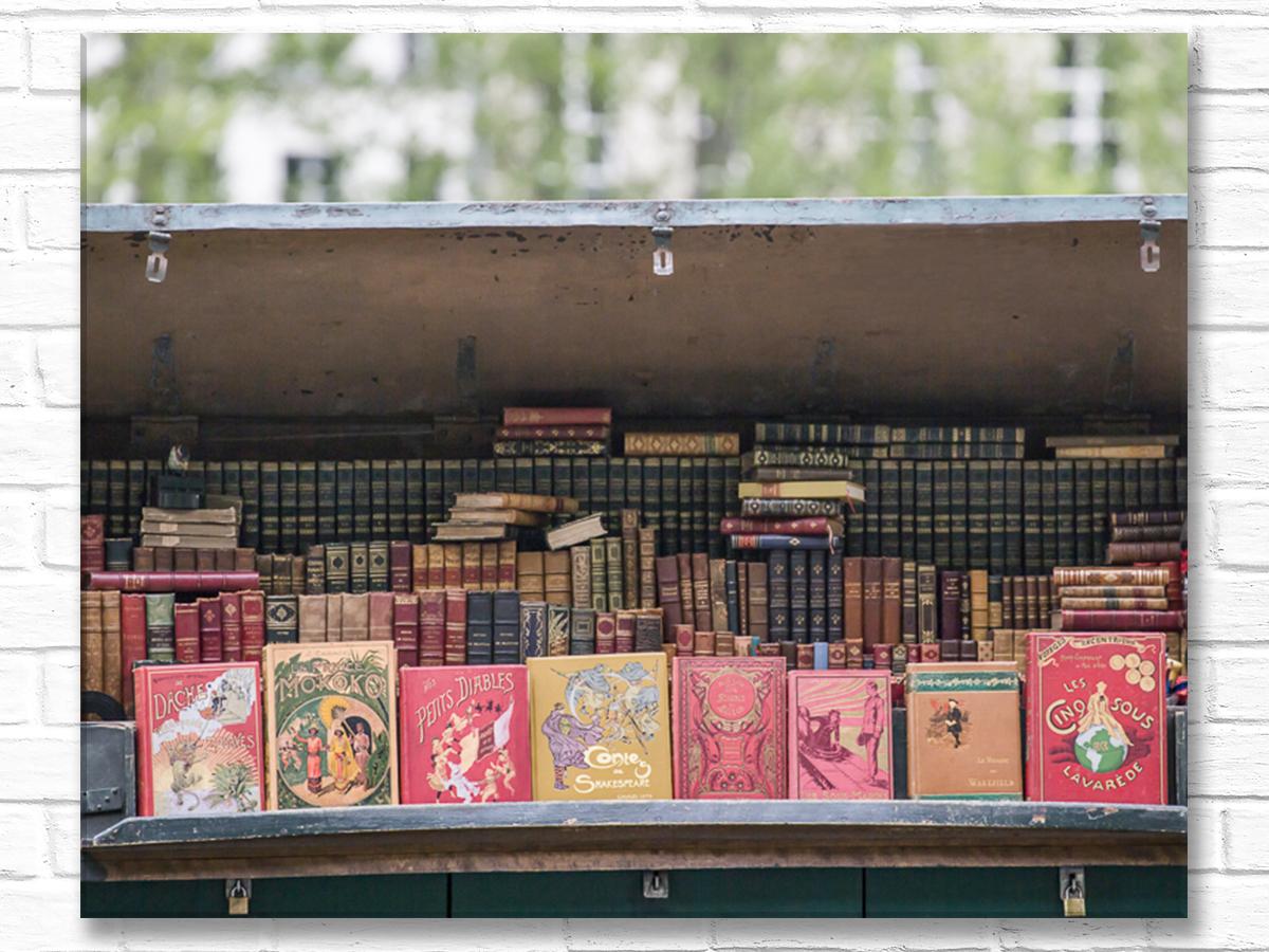 Paris France Home Decor Canvas Wall Art, Antique Books Stall