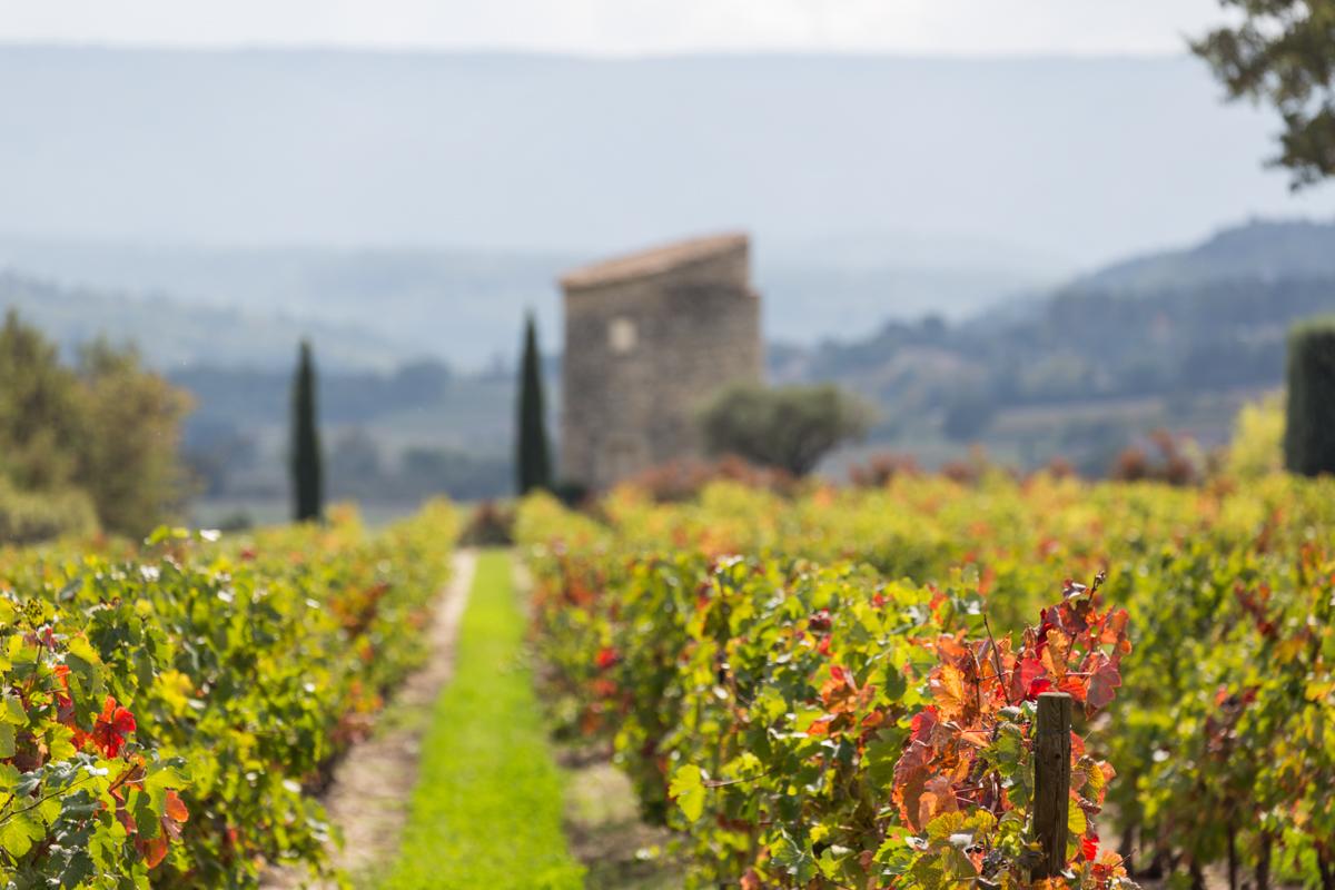 Near Roussillon