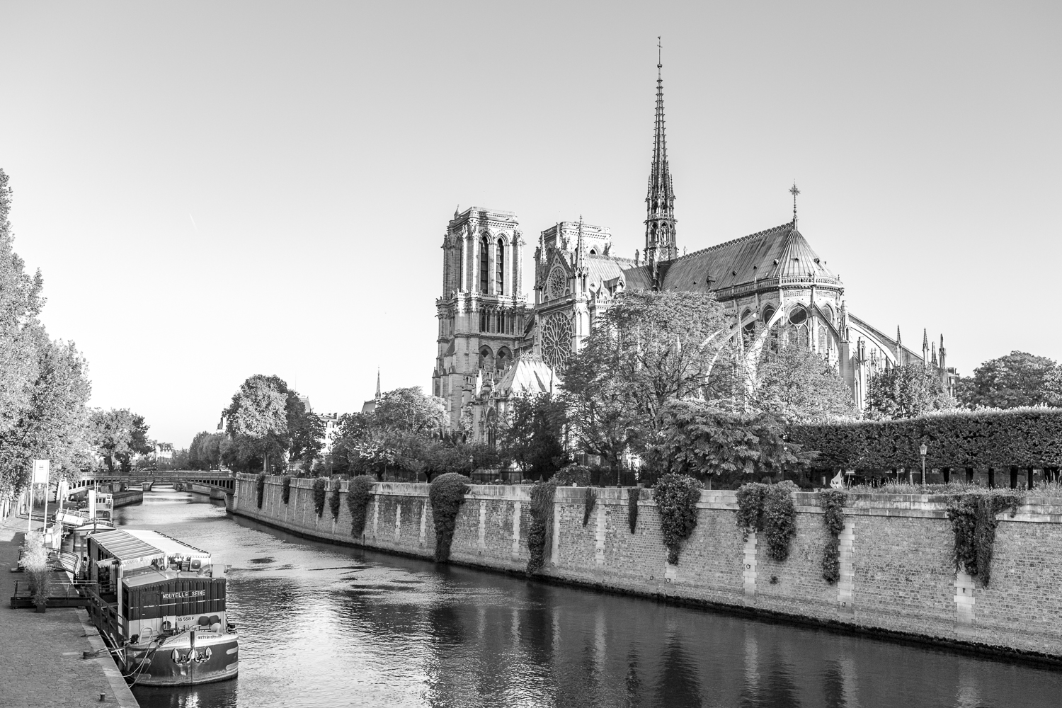 Copy of Notre-Dame cathedral and the Seine