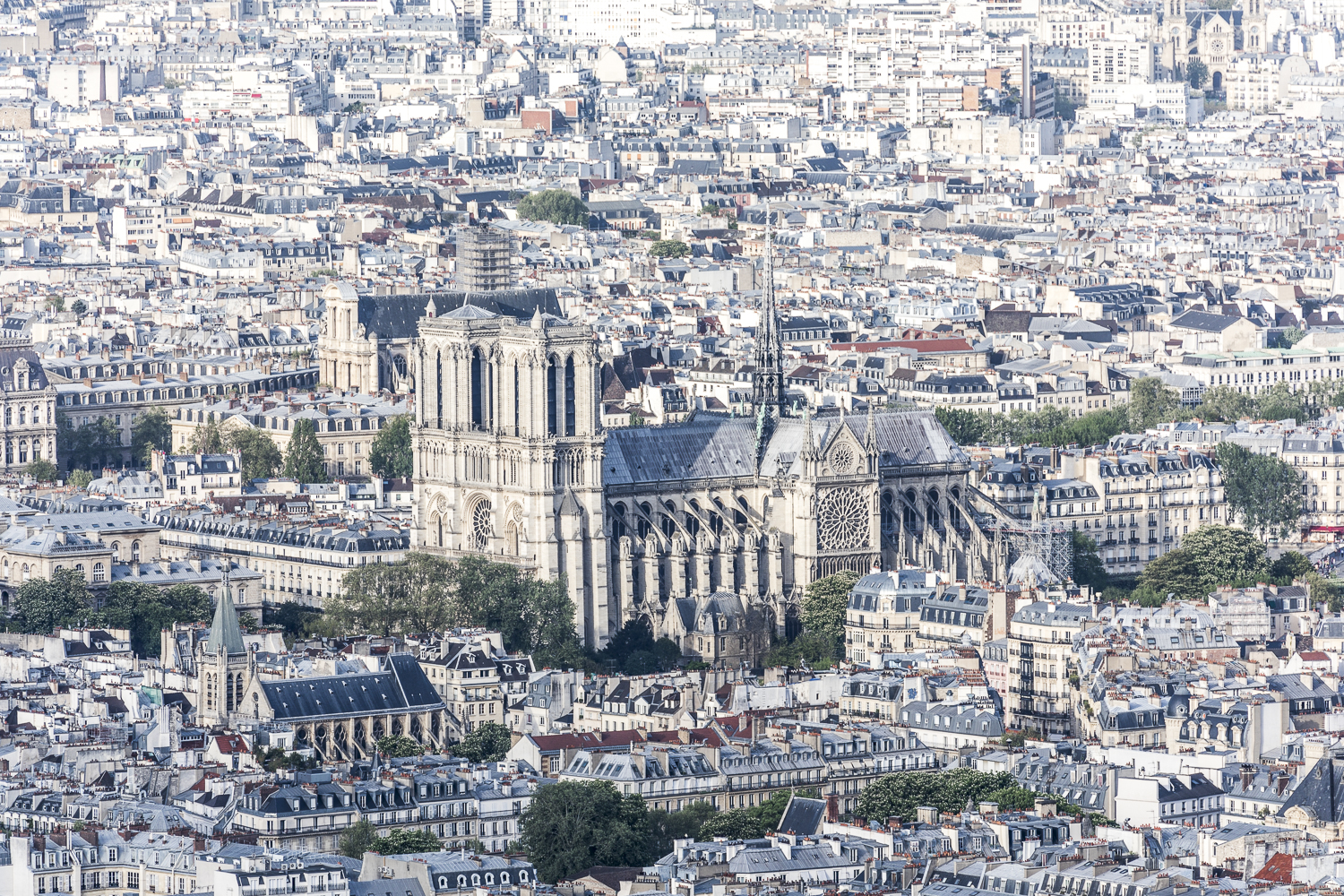 Copy of Notre-Dame at the Heart of Paris