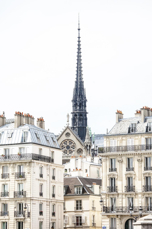 Notre-Dame above Île de la Cité
