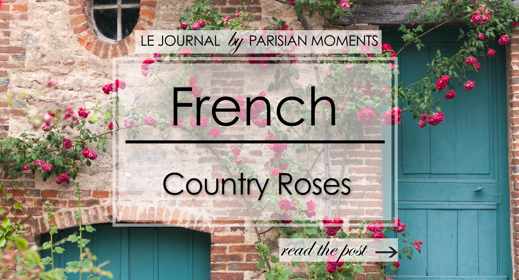 FrenchCountryRoses.jpg